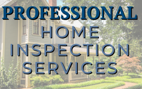 Read more about the article Your Professional Home Inspectors!